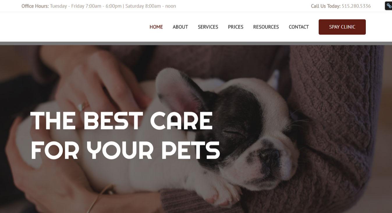 WordPress Website Design   Jennifer Franklin Portfolio   Veterinary Website Design   Jennifer-Franklin.com